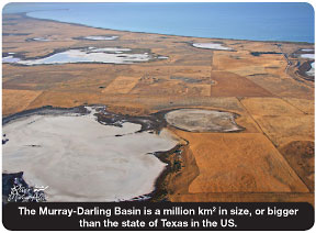Murray-Darling BasinPic.jpg